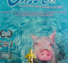 "Documentary Film ""When Pigs Swim"" is a Rising Star at the Bahamas International Film Festival (BIFF)"